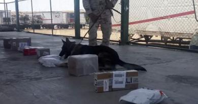 Aseguran otro paquete con sustancias ilícitas en Puerto Pichilingue