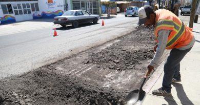 Rehabilitan 127.55 metros cuadrados de la calle Leona Vicario en CSL