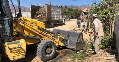 Retiran más de 15 mil toneladas de ramas, basura y cacharros de calles de Los Cabos